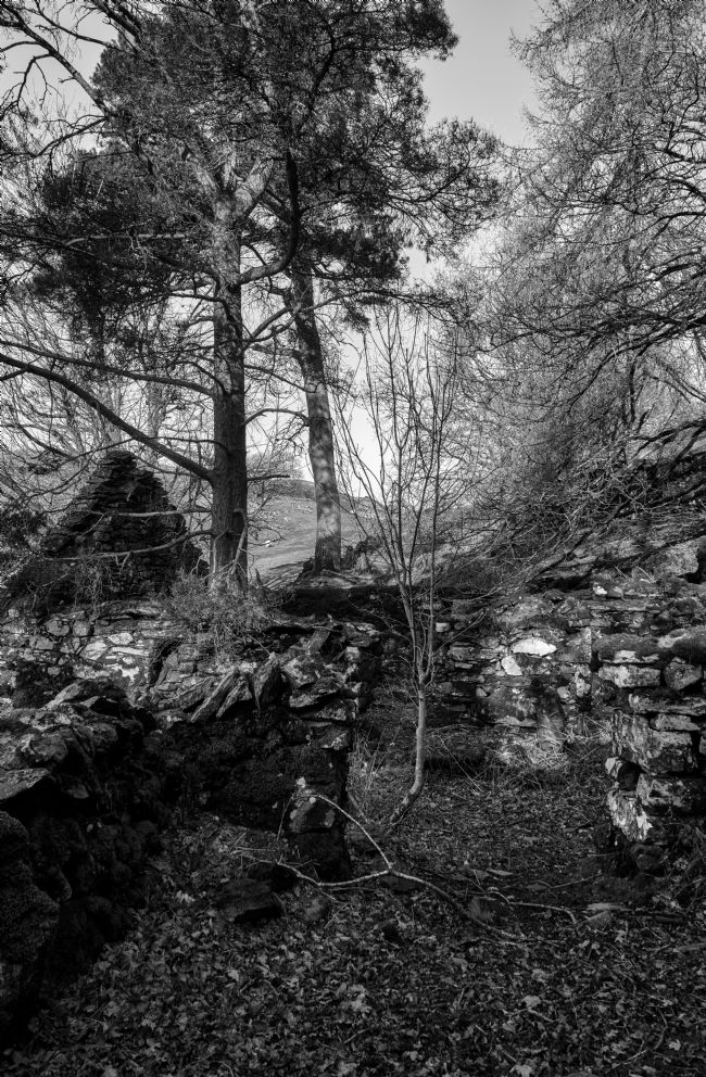 Gordon Maclaren | Abandoned Cottage near Cadair Idris