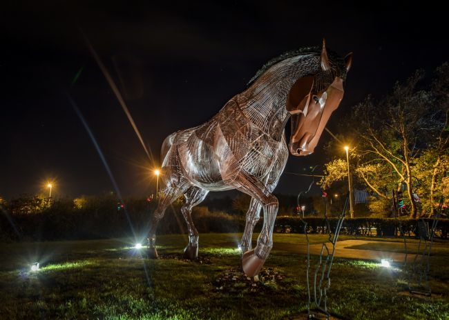 Kevin Cook | War Horse at night
