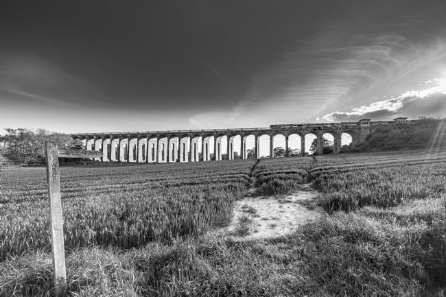 Andrew King | The Ouse Valley Viaduct from the East