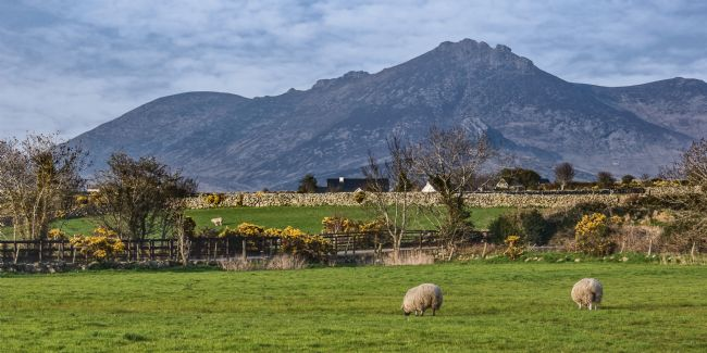Jane McIlroy | Slieve Bignian in the Mourne Mountains near Kilkeel
