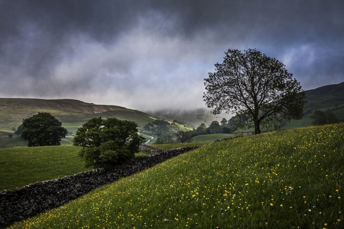 Sandra Cockayne | Thunder in Swaledale