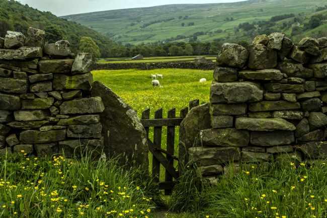 Sandra Cockayne | Stile And Dry Stone Wall