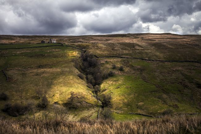 Sandra Cockayne | West Stonesdale Gorge