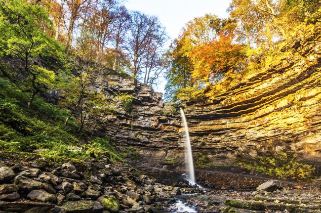 Sandra Cockayne | Hardraw Force