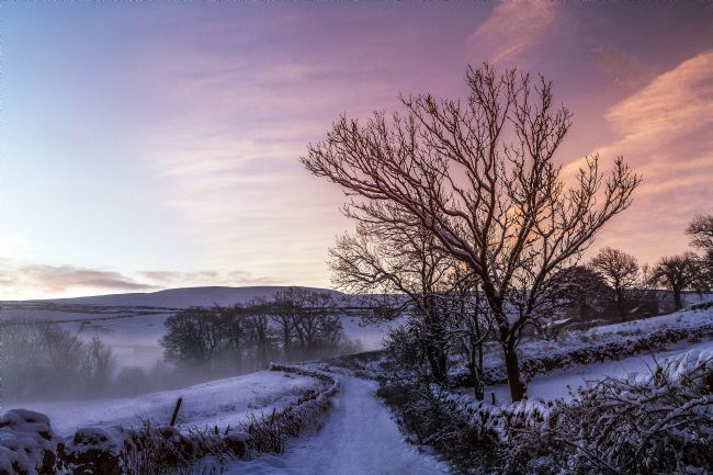 Sandra Cockayne | Snow In Swaledale