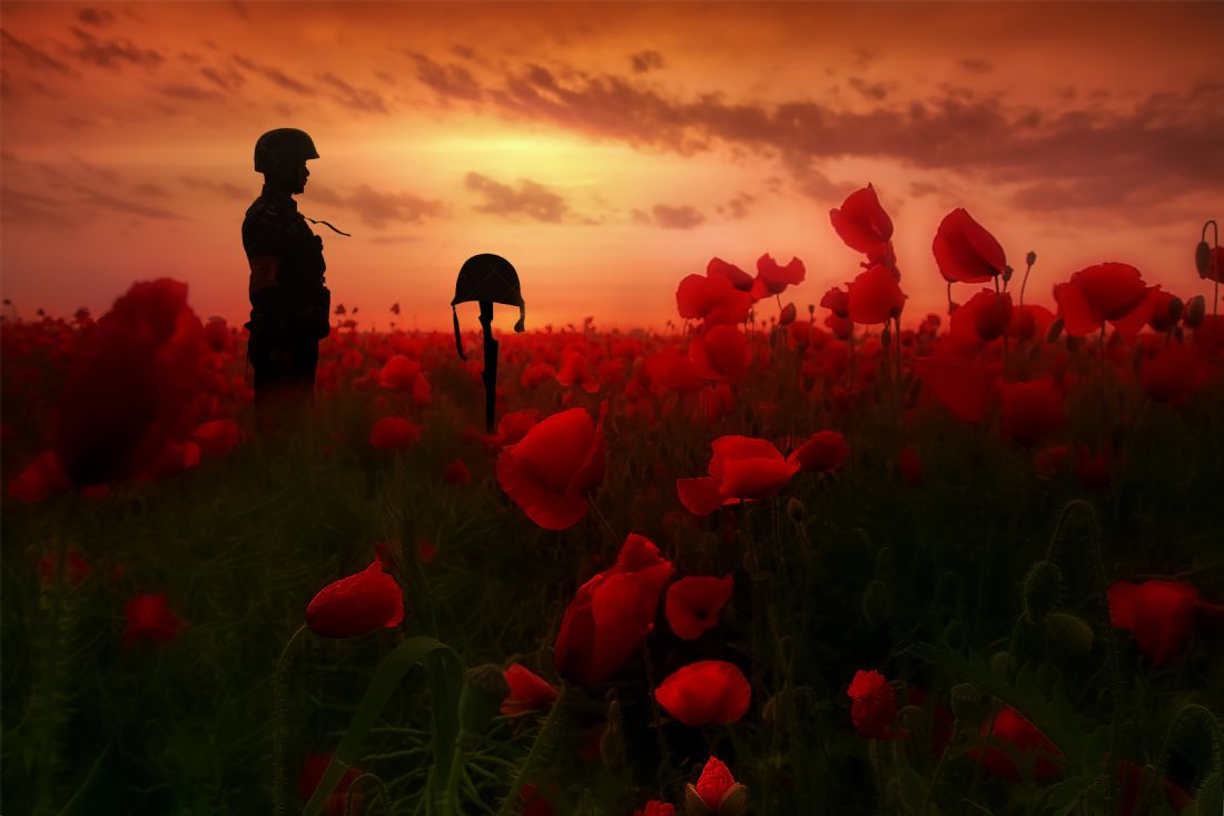 James Biggadike | A Field Of Heroes