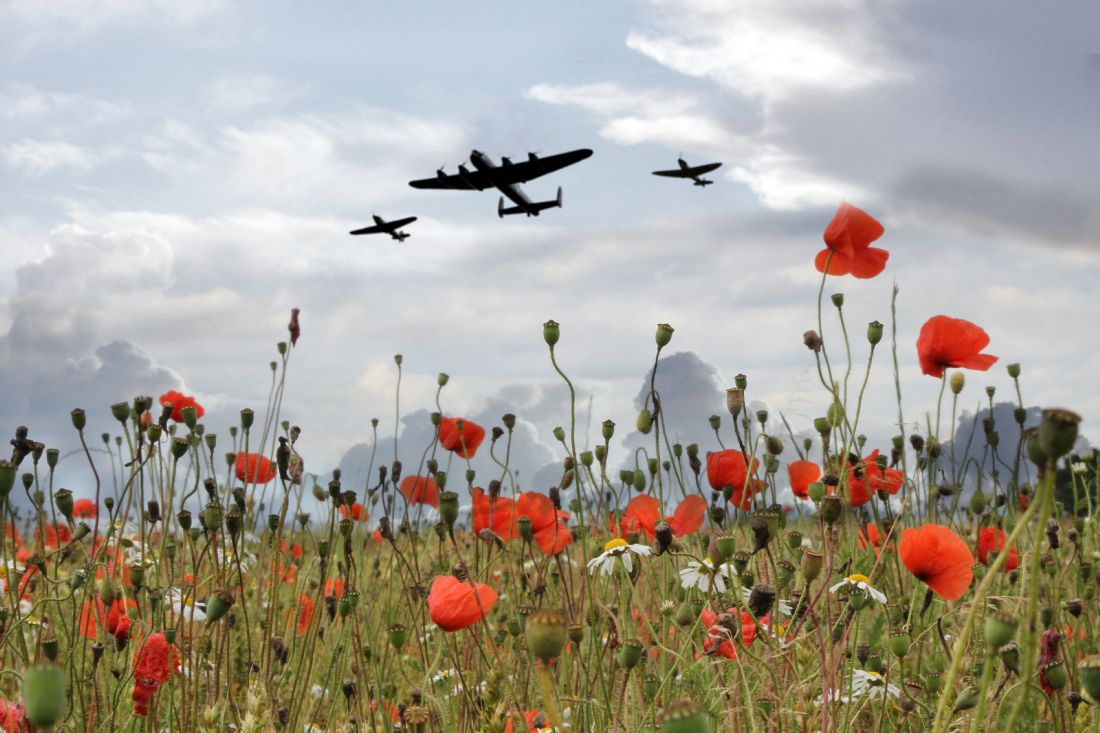 James Biggadike | BBMF over The Poppies