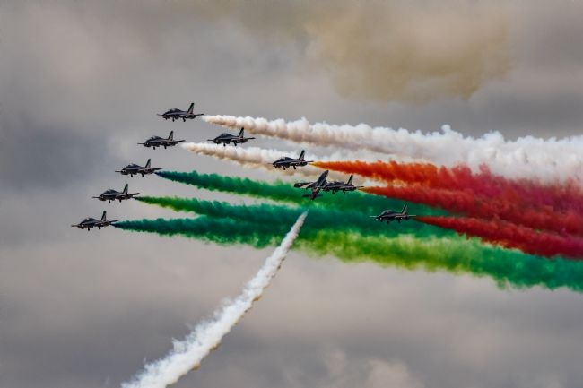 Airpower Art | Frecce Tricolori Goose
