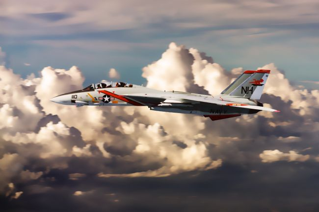 James Biggadike | F-14 Tomcat VF-114