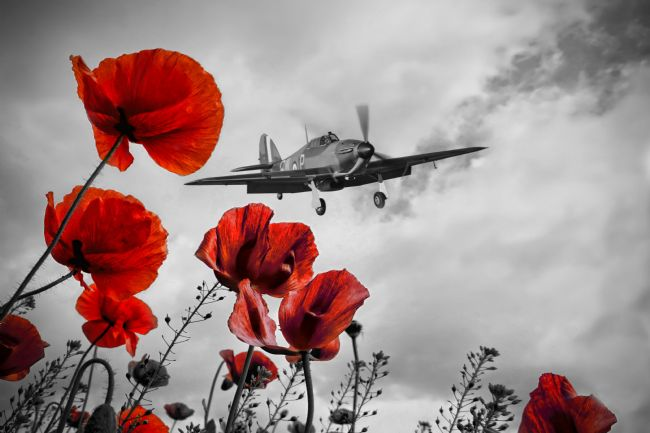 Airpower Art | Hurricane Poppy Fly Past