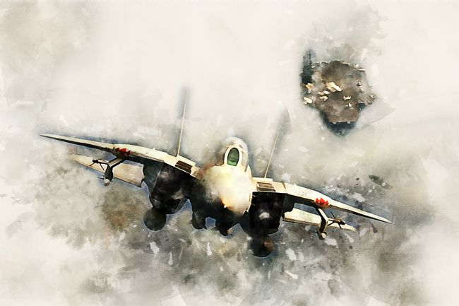 James Biggadike | F-14 Tomcat - Painting