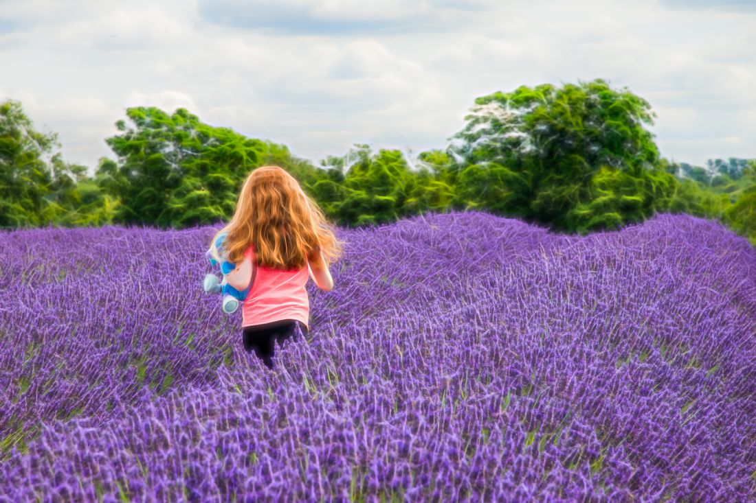 Christine Fitzgerald | Childhood And lavender