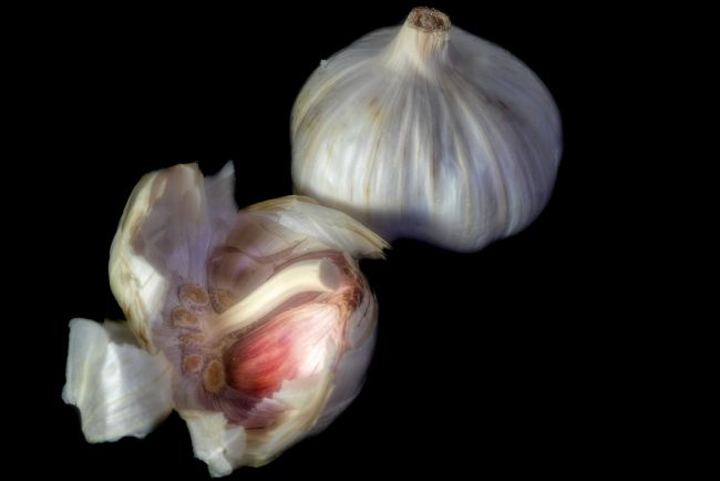 Christine Fitzgerald | Take Six Cloves of Garlic