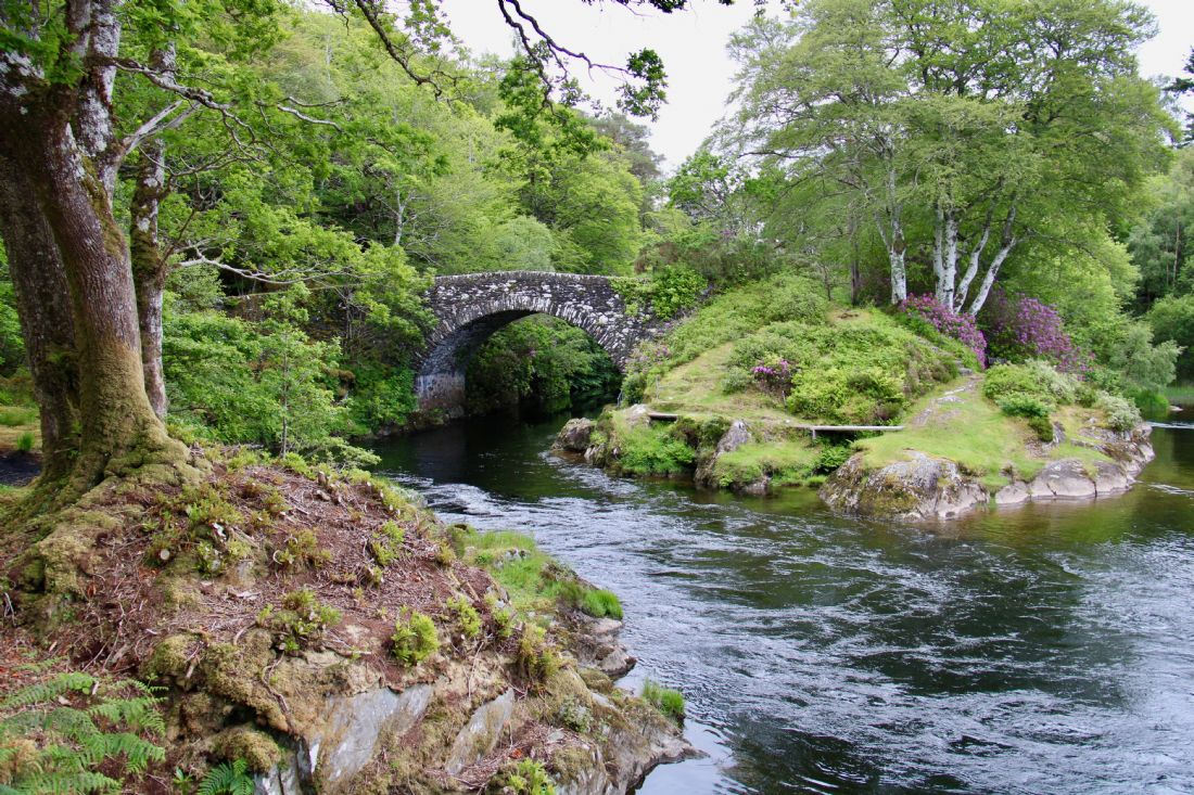Elvia Worrall | The Old Shiel Bridge