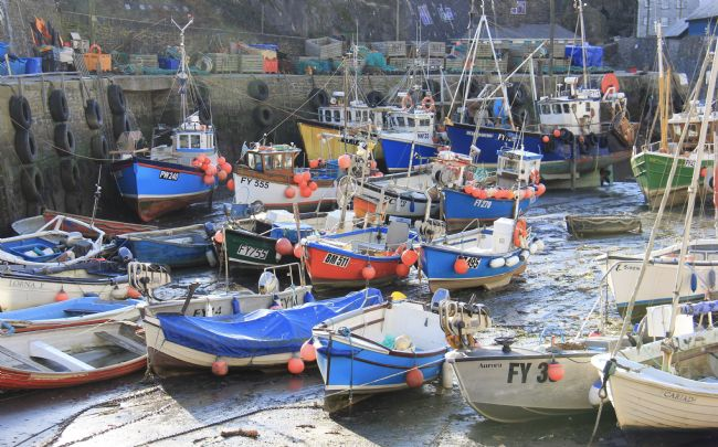 Elvia Worrall | Mevagissey Harbour, Cornwall, UK
