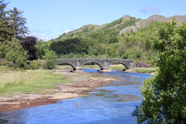 Elvia Worrall | Shiel Bridge Acharacle Scotland