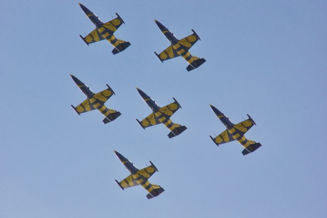 Elvia Worrall | Baltic Bees Swedish Air Display Team