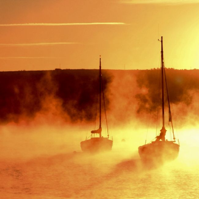 Elvia Worrall | Misty Morning Mylor