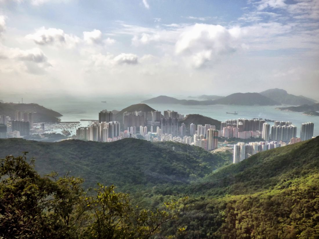 Lynn Bolt | Hong Kong from Victoria Peak