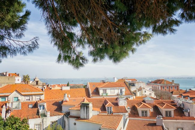 Lynn Bolt | Rooftops of Lisbon