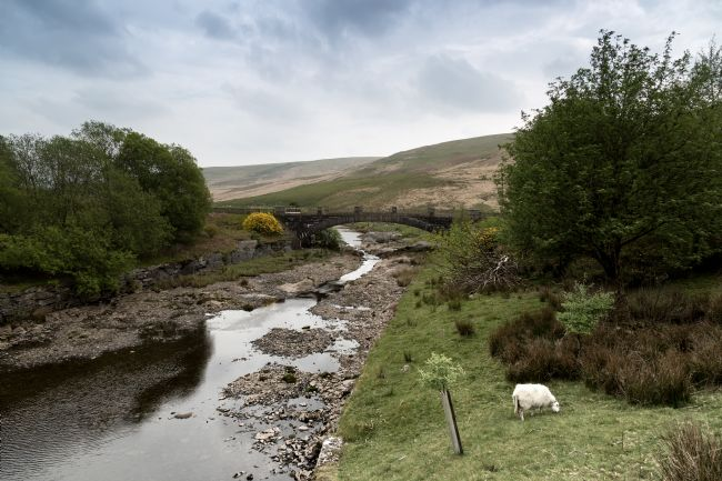 Michael Greaves | Afon Claerwen with Bridge. Welsh countryside.