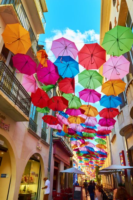 Chris Chard | Carcassonne Umbrellas