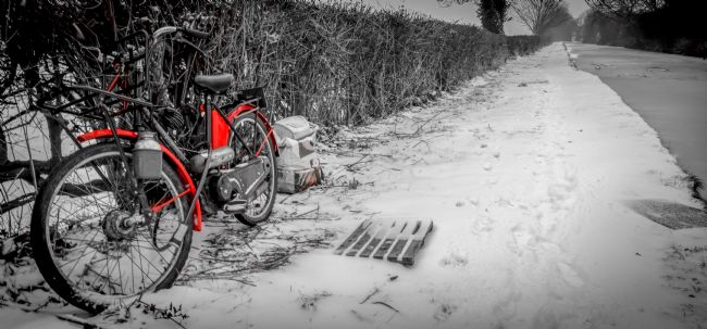 Warren Byrne | Fazeley Canal Side in the Snow 7