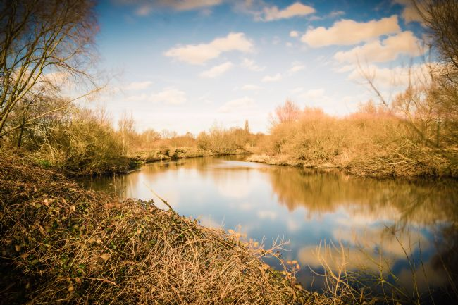 Warren Byrne | View of the River Tame